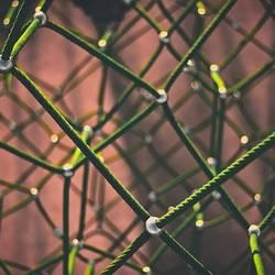 Netzwerkgedanke